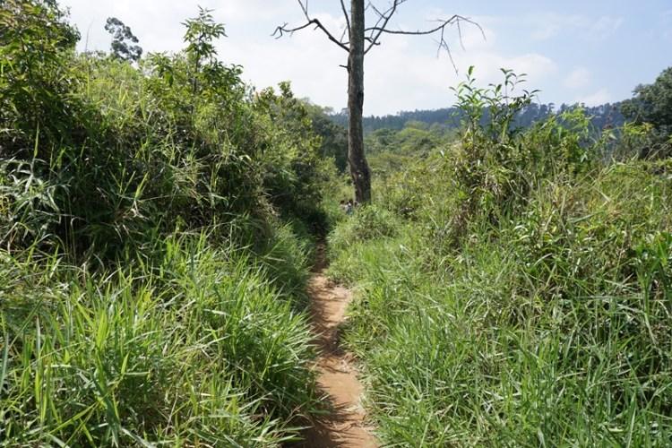 Route to ella's rock, Sri Lanka, Blue Sky and Wine