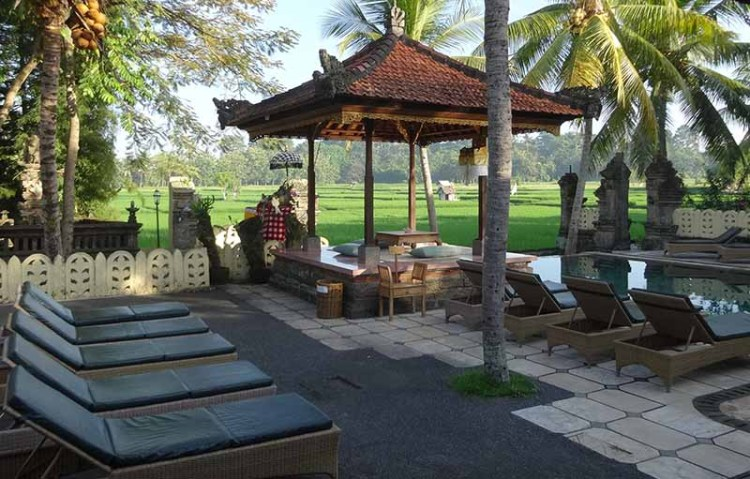 Green Field Hotel and Restaurant ubud indonisia, Blue Sky and Wine
