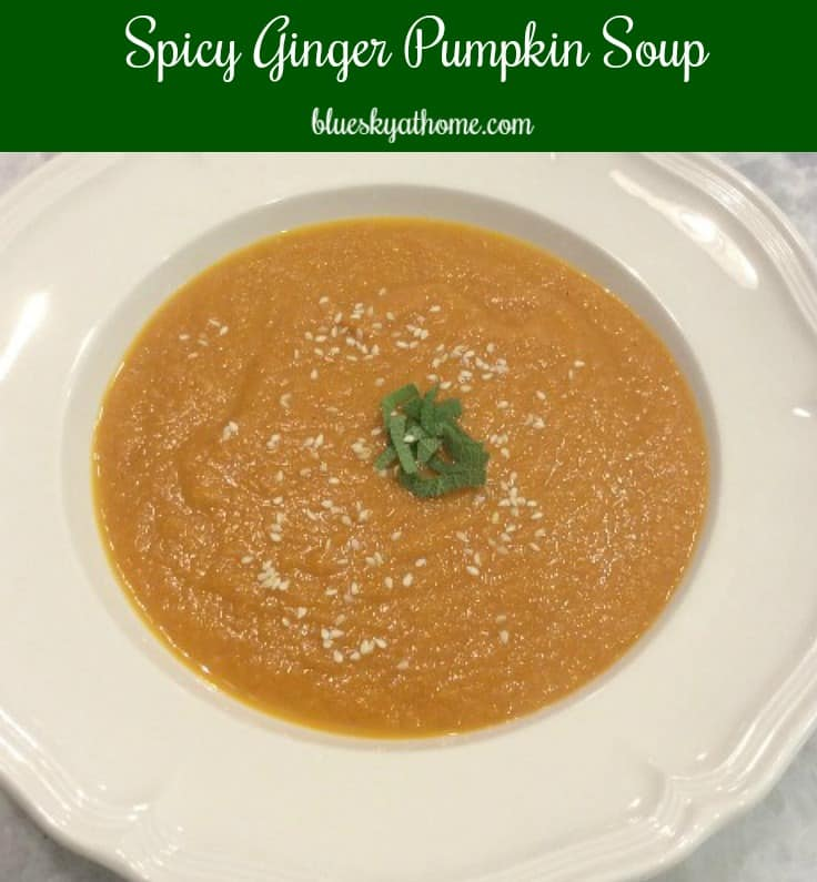 Spicy Pumpkin Soup with Sesame Seeds is a delicious dish perfect for chilly fall nights. Start~to~finish instructions and equipment tips. BlueskyatHome.com
