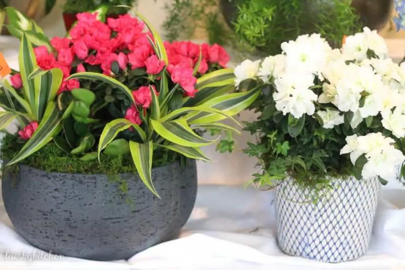 How 100 Beautiful Flower Arrangements Inspire Generosity for a worthwhile cause. Each year volunteers design gorgeous flower arrangements to raise money.
