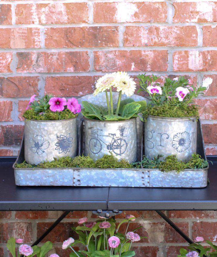 stenciled galvanized containers spring flowers