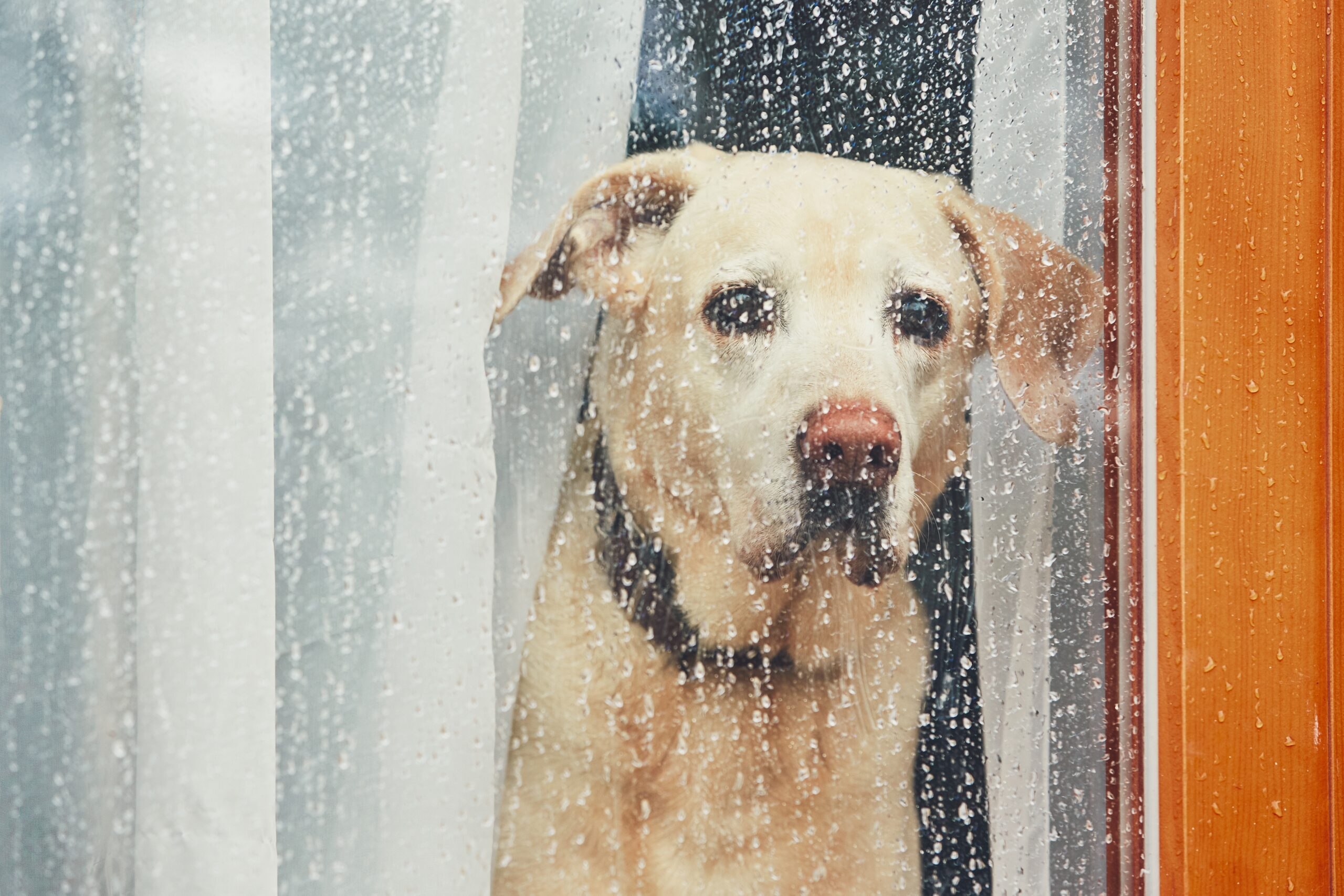 prepping your hvac for severe weather