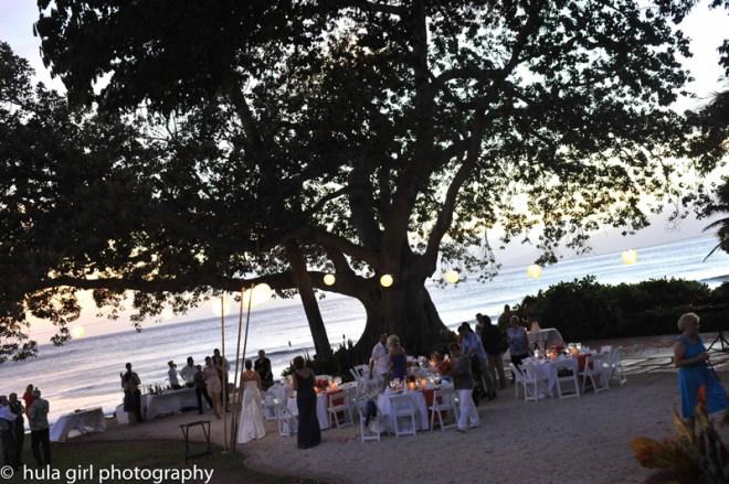 Hula Girl Photograhy - maui wedding