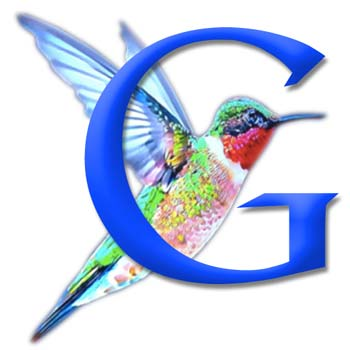 New Google Hummingbird Search Engine Algorithm