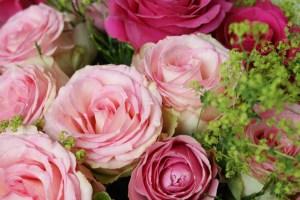 bluete_rosenstrauss_rosa