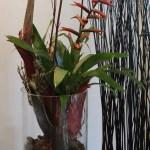 pflanzen_und_gefässe_vase_pflanze_gruen_rot_braun_sockel
