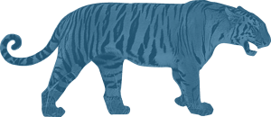 blue-tiger-FULL-logo2