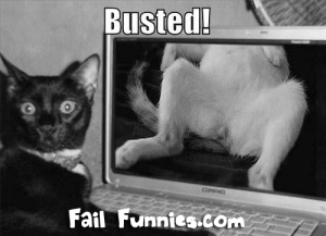 lolcat-gets-busted