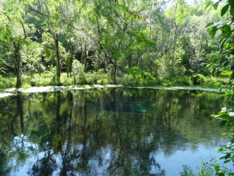 Blue Hole Springs