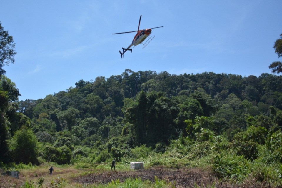 An orangutan in a cage is delivered by helicopter in Central Kalimantan, Borneo, Indonesia - Handout / ©AFP