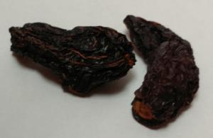 chipotle or morita chilies