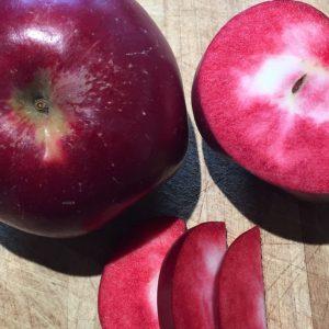 Fruitiers à racines nues (disponibles à partir de fin novembre)