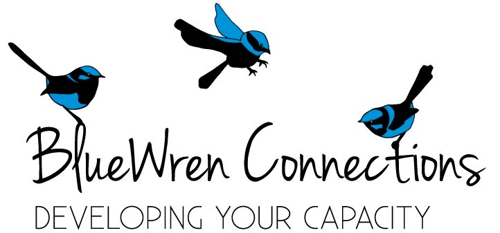 BlueWren Connections