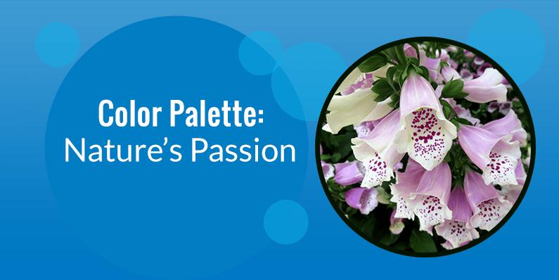 Color Palette: Nature's Passion