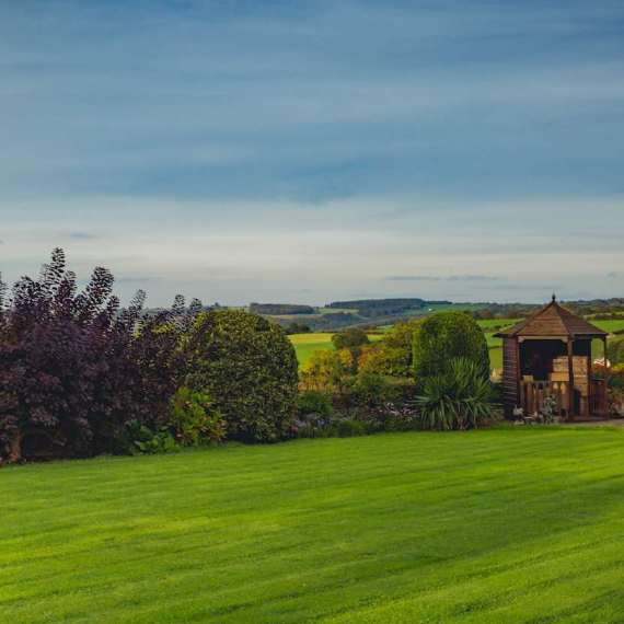 marketing-coleford-forest-of-dean