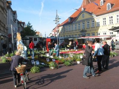 blumen-zentrum-hoppe-uelzen-vitalmarkt-02