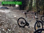 only rough, sandy, and steep roads for the mountain bike noob