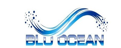 Blu Ocean Logo - Blue Wave Logo Above the words Blu Ocean