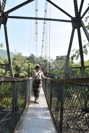 Peradeniya botanical gardens - suspension bridge