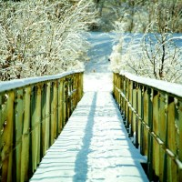 Snow Bridge - Bridge & Snow | Blurbomat.com