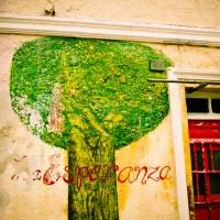 Esperanza | Blurbomat.com
