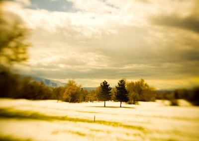 Melting - Lensbaby Winter Scene - Salt Lake City   Blurbomat.com