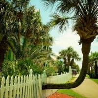Making Accommodations - Destin, Florida | Blurbomat.com