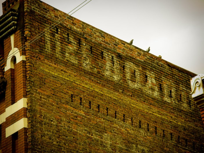 Old City Pigeons - Old City, Knoxville, Tennessee | Blurbomat.com