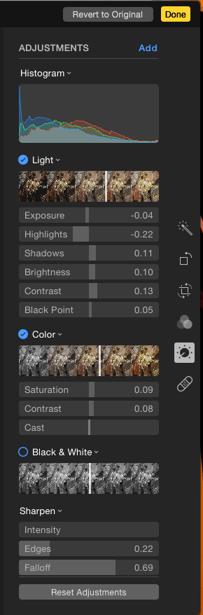 Photos App screenshot of Adjustments