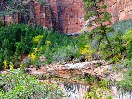 Emerald Pools Hike: Marlo Took This 1