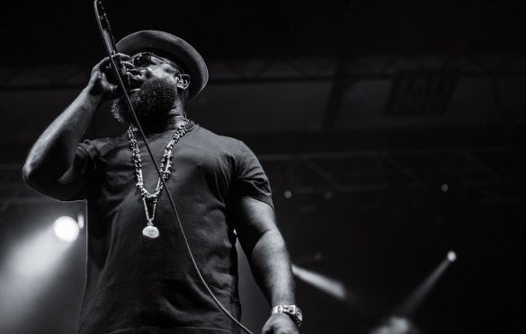 The Roots at Cayuga Sound (Stewart Park) 9/23/17. Photo by Cortney Armitage (@CortneyArmitage) for www.BlurredCulture.com.