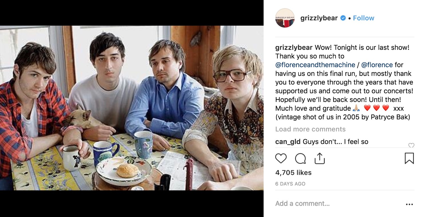 Grizzly Bear Instagram Post.