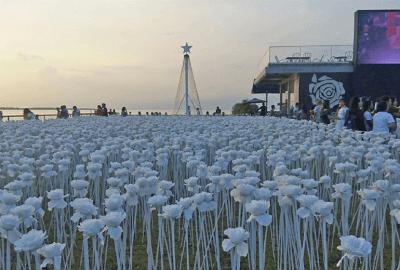 10,000 Roses Cafe : A Cafe That Showcases Glowing Roses in Cebu | Blushing Geek