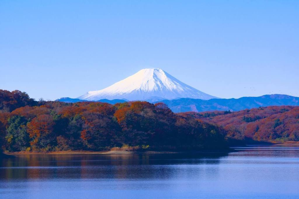 13 Reasons Why I Love Japan - Tourist Attraction   Blushing Geek