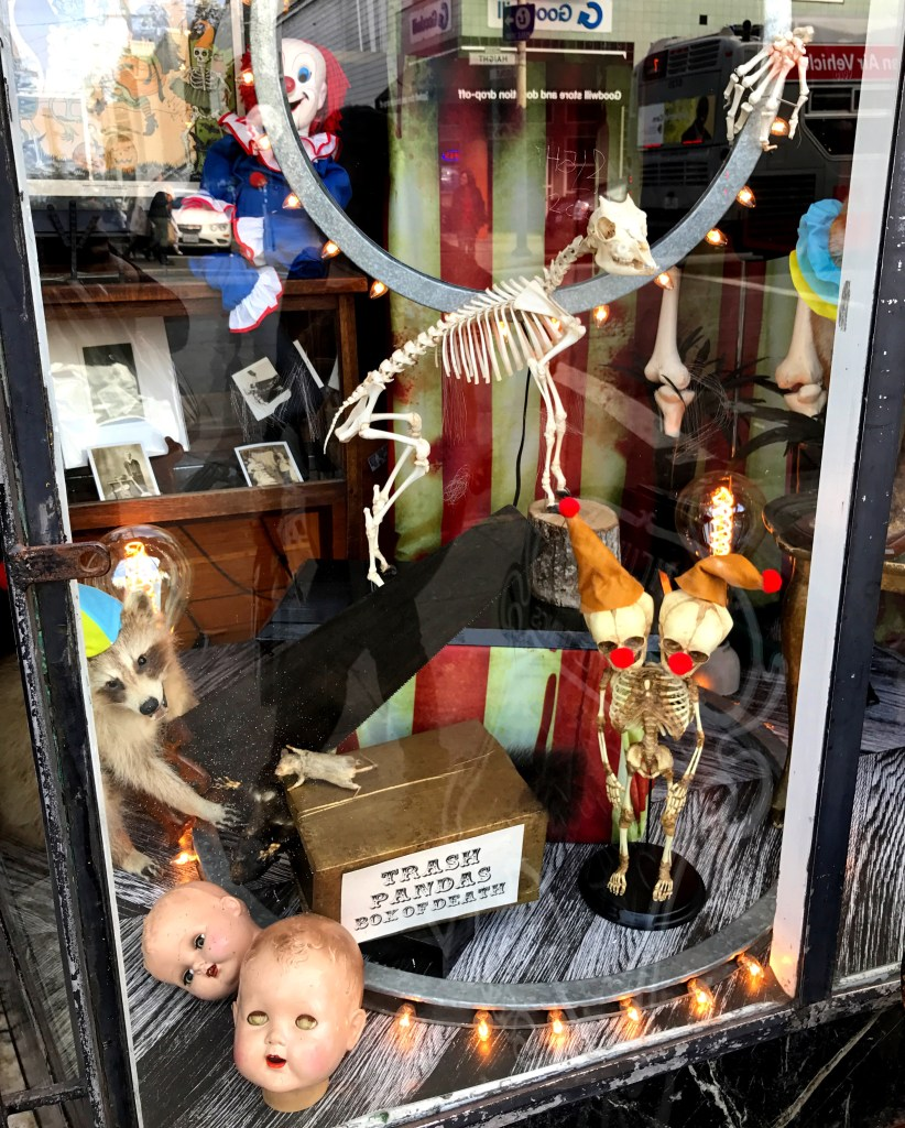 One of the interesting stores on Haight St in San Francisco