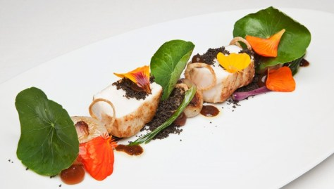 providence-restaurant-halibut