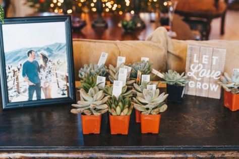 let-love-grow-succulents-bridal-shower-favor