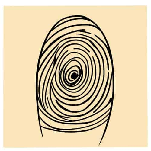 Concentric Whorl