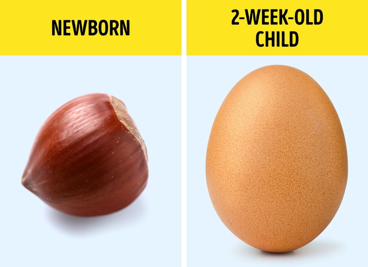 6 Best Facts That Prove That Babies Are With Powers That Hardly Anyone Can Believe In Them 5
