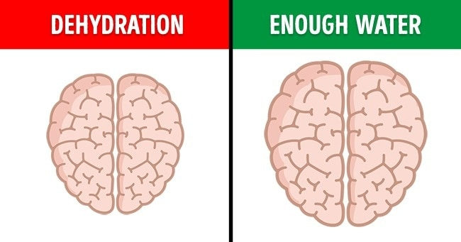 7 Amazing Examples That Would Influence Our Brain A Lot 5