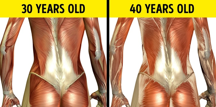 24 Changes That Take Place In A Human Body Every 10 Years 1