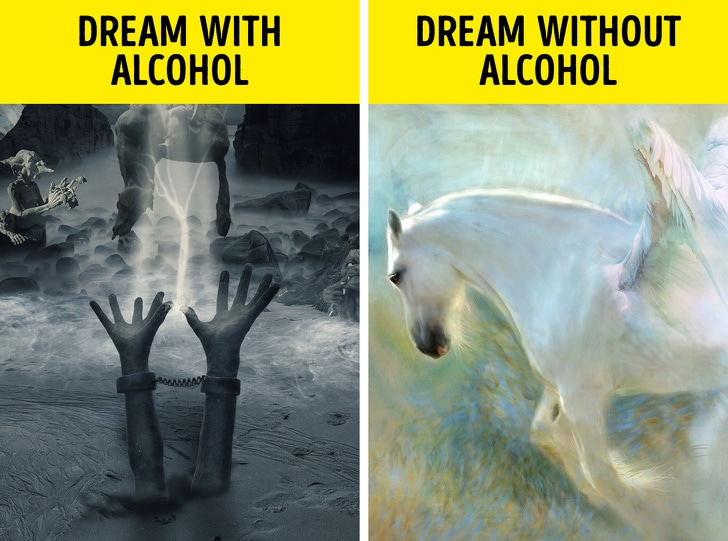Changes That You Usually See After You Stop Drinking Alcohol From Last 28 Days 3