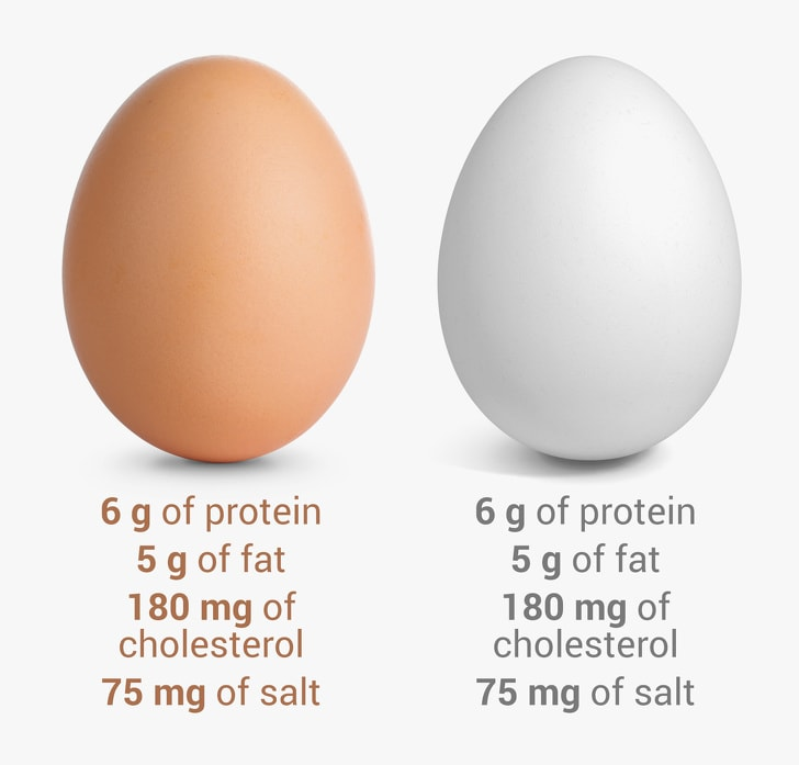 9 Myths About Eggs We Should Forget Forever 5