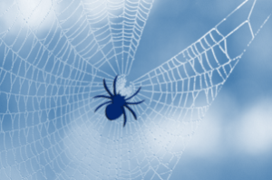 bluSpider in Web