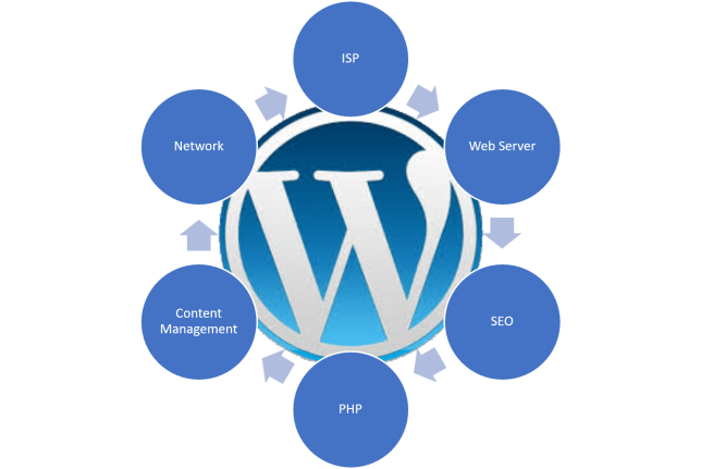 WordPress Maintenance Services can cover more