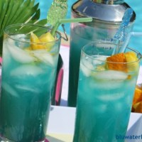 bluwaterdrink ~ summer round-up!