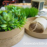 diy faux succulent planter ~