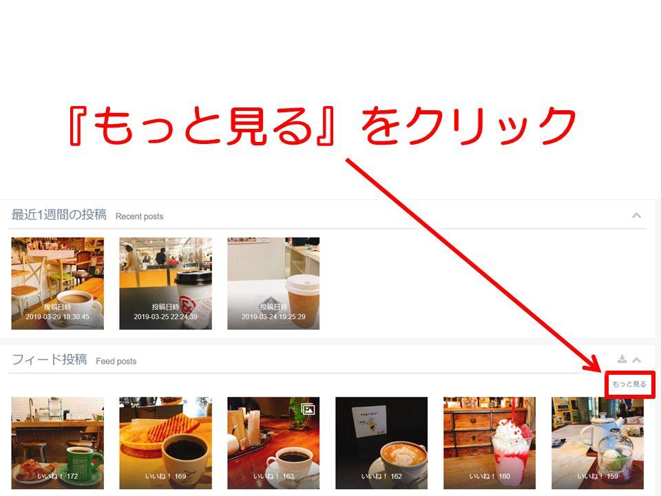 Instagram解析 SINIS(サイニス)画面解説 フィード投稿