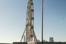 The Melbourne Ferris Wheel