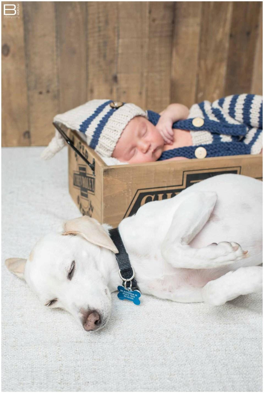 Houston photographer newborn baby boy portraits with neutral color tones in Austin, Tx